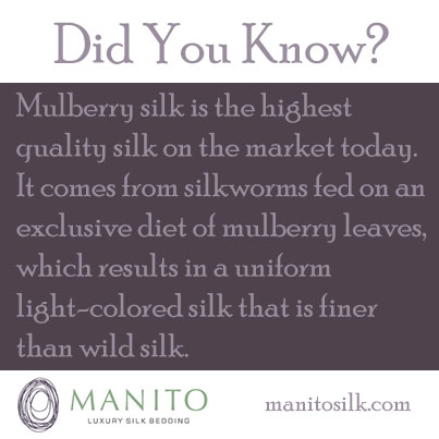 didyouknow-mulberry